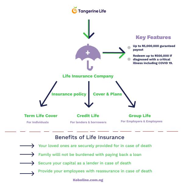 Tangerine Life Insurance Review 2020 | Plans